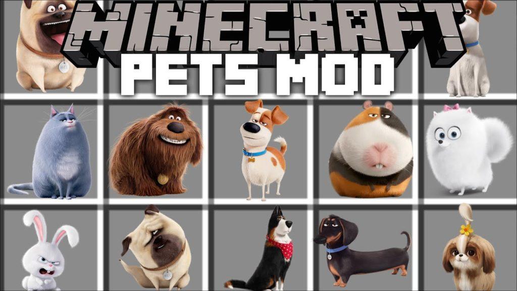 Minecraft Buy Your Pet Supplies Online